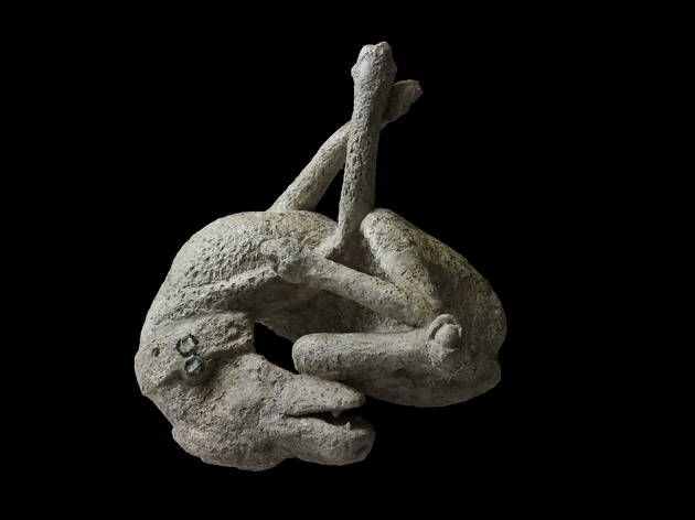 Plaster cast of a dog (Soprintendenza Speciale per i Beni Archeologici di Napoli e Pompei / Trustees of the British Museum)