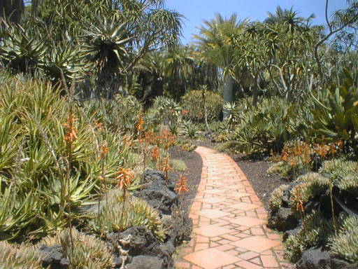 For a botanical garden alternative: Lotusland