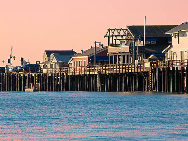 For the day's fresh catch: Stearns Wharf