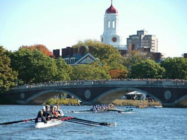 Boston fall regatta