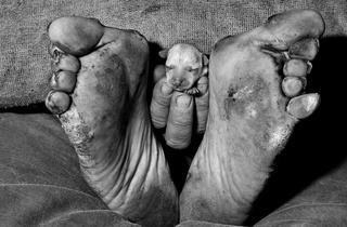 ('Puppy between feet', 1999 / ©Roger Ballen / Agence VU')