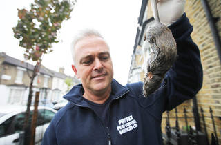 From Wild Britain   DIRTY BRITAIN  4th June 2013 on ITV   Pictured: Pest Controller Jim England  The dirty secrets about the way modern Brits live are revealed by the filthy work of the men and women who clean up after us.  The series graphically shows th