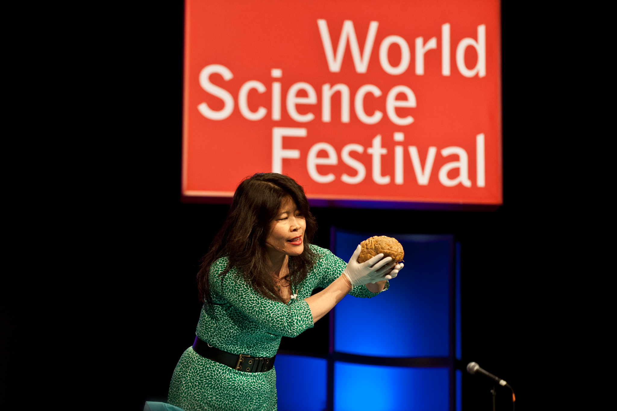 World Science Festival
