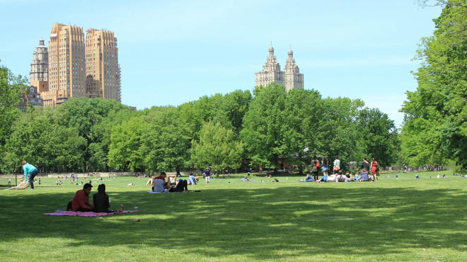 Central Park: The ultimate guide