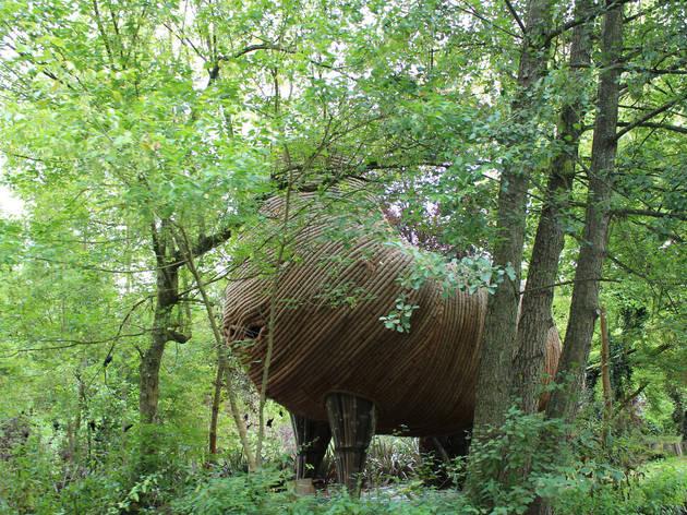 El bosque tiene hamacas (Foto: Elsa Pereira y Nicolas Hecht)