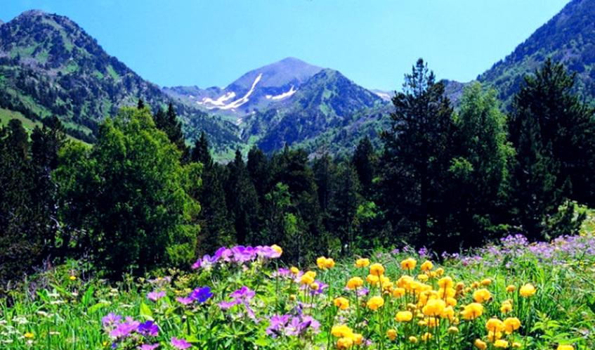 Parc Natural del Vall de Sorteny
