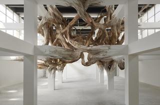 Exposition 'Baitogogo' (Henrique Oliveira, 'Baitogogo', 2013 / Photo : ©André Morin)