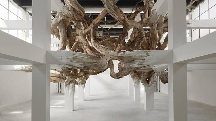 Exposition 'Nouvelles vagues' au Palais de Tokyo Henrique Oliveira