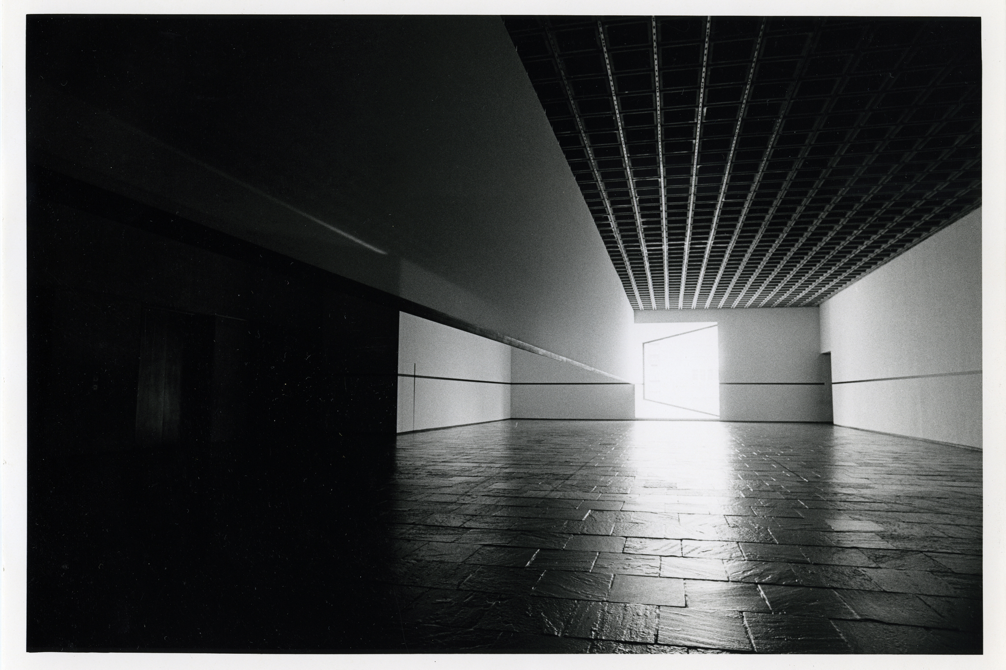 """Robert Irwin: Scrim veil—Black rectangle—Natural light, Whitney Museum of American Art, New York (1977)"""