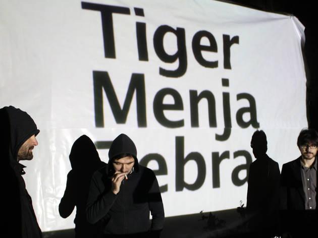 Tiger Menja Zebra + Leonmanso
