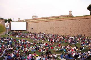 Cinema a la fresca 2014: El públic tria!