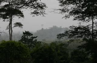 Kakum National Park, Accra, Ghana