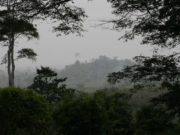 Kakum National Park services