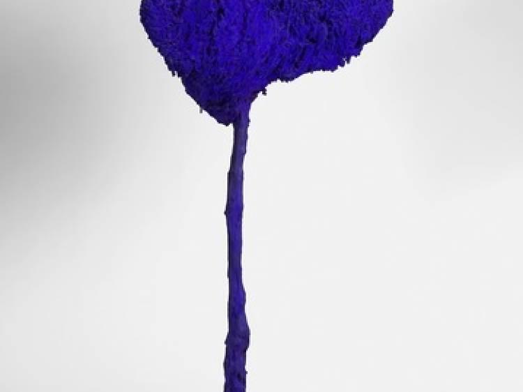 SE 71, l'arbre, grande éponge bleue