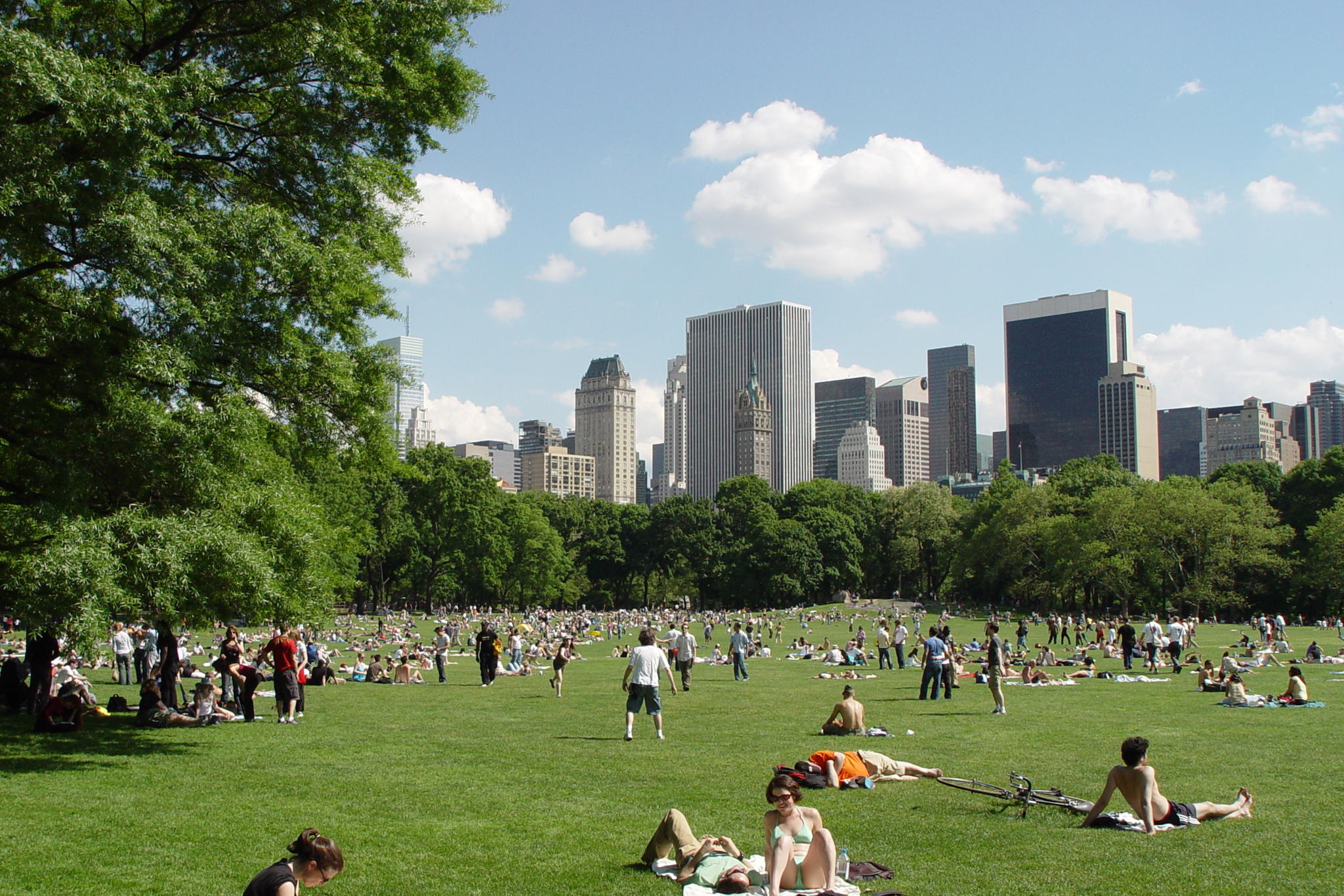 Things to do in NYC parks