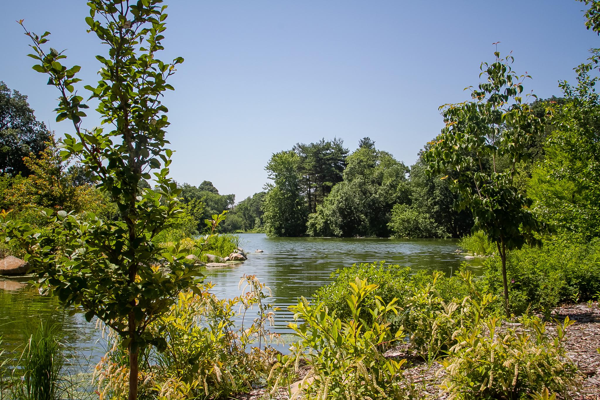 Lakeside at Prospect Park