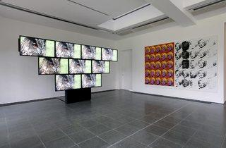 Sturtevant (Installation view 'Leaps, Jumps and Bumps')