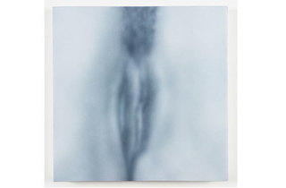 (Photograph: Courtesy the artist and Marianne Boesky Gallery; New York; © Betty Tompkins)
