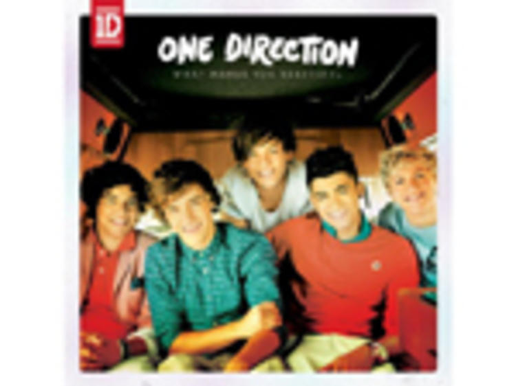 """""""What Makes You Beautiful"""" by One Direction"""