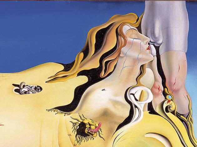 Dalí masturbador