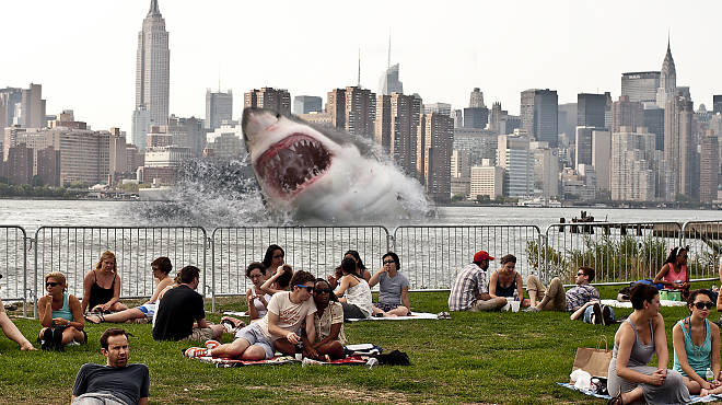 Artist's rendering of a possible Williamsburg shark attack