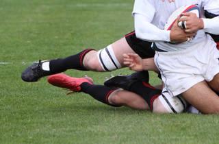 Rugby : France / Afrique du Sud