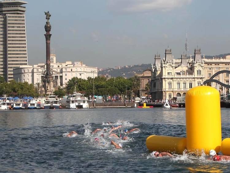 5 quilòmetres per aigües obertes