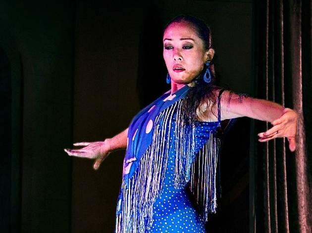 Celebraciones Flamencas