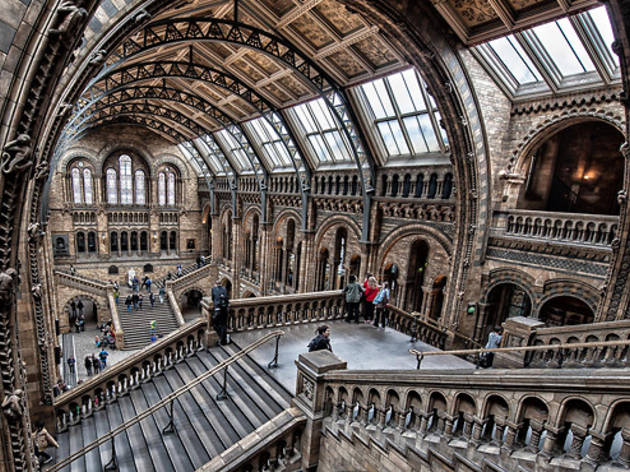 Natural History Museum Museums In Brompton London