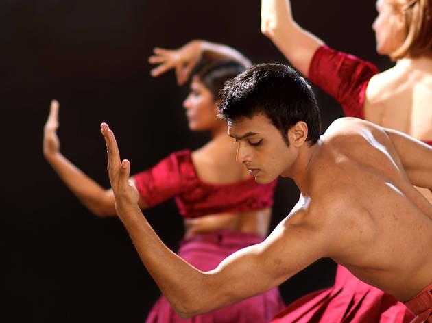 Shobana Jeyasingh Dance: Strange Blooms