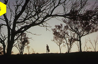 Wake in Fright (aka Outback)