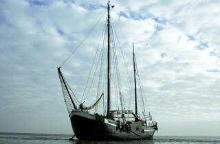 Thames Festival 2013: 1513: A Ships' Opera