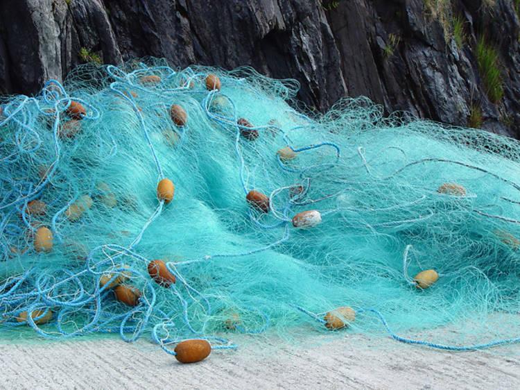 Una experiència pesquera