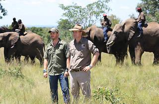 Tom Hardy's Poaching Wars