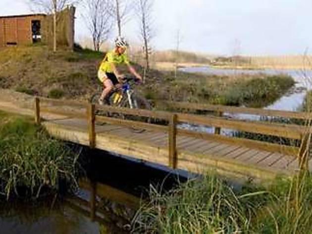 Pont de fusta que voreja l'aiguamoll de Sils