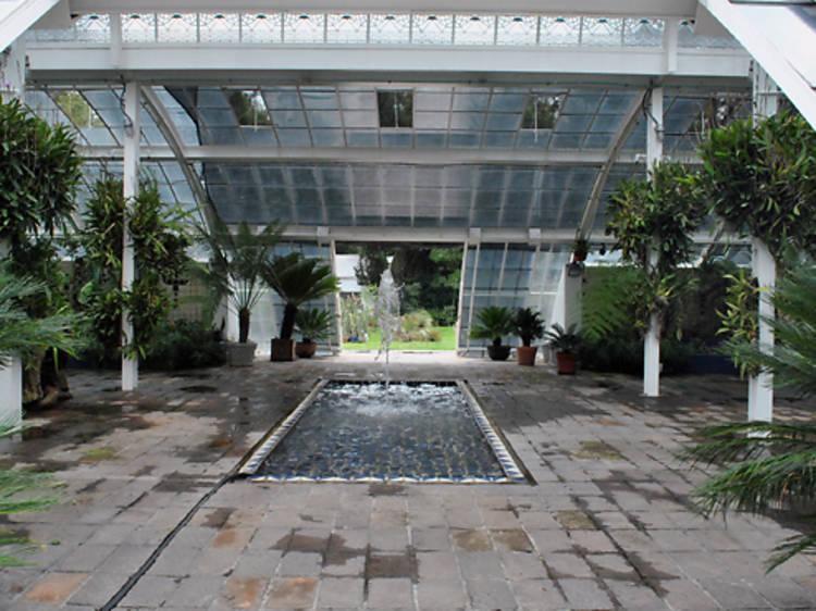 Jardín Botánico de Chapultepec
