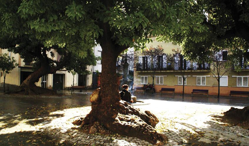 Plaça Prim