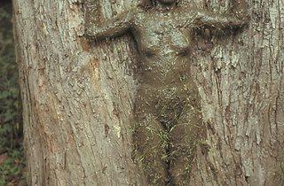 Ana Mendieta ('Tree of Life', 1976)