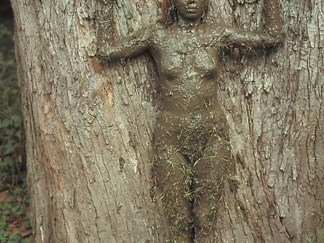 Ana Mendieta ('Tree of Life', 1976)