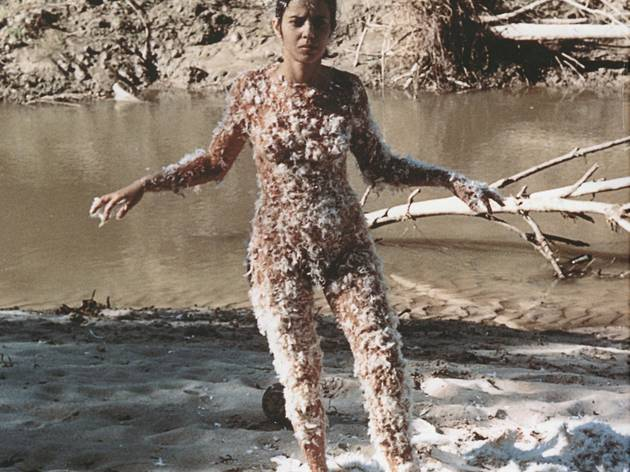 Ana Mendieta ('Untitled (Blood and Feathers)', 1974)