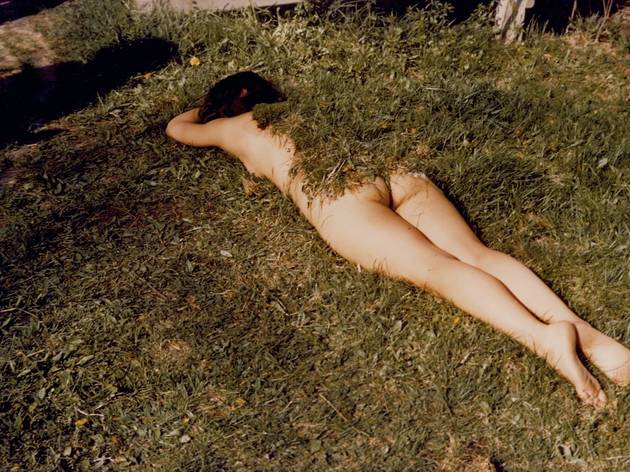Ana Mendieta ('Untitled (Grass on Woman)', 1972)