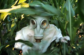 GMO OMG: movie review