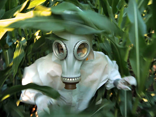 GMO OMG: movie review