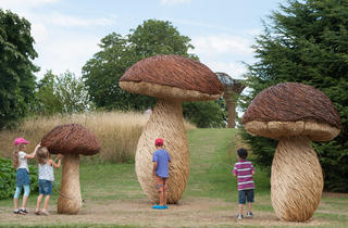 Kew's Summer Festival: Incredible Edibles
