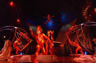 Cirque du Soleil. Varekai