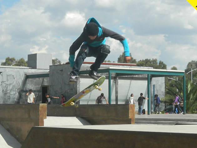 Skateboarding Vans Royal Side Stripe