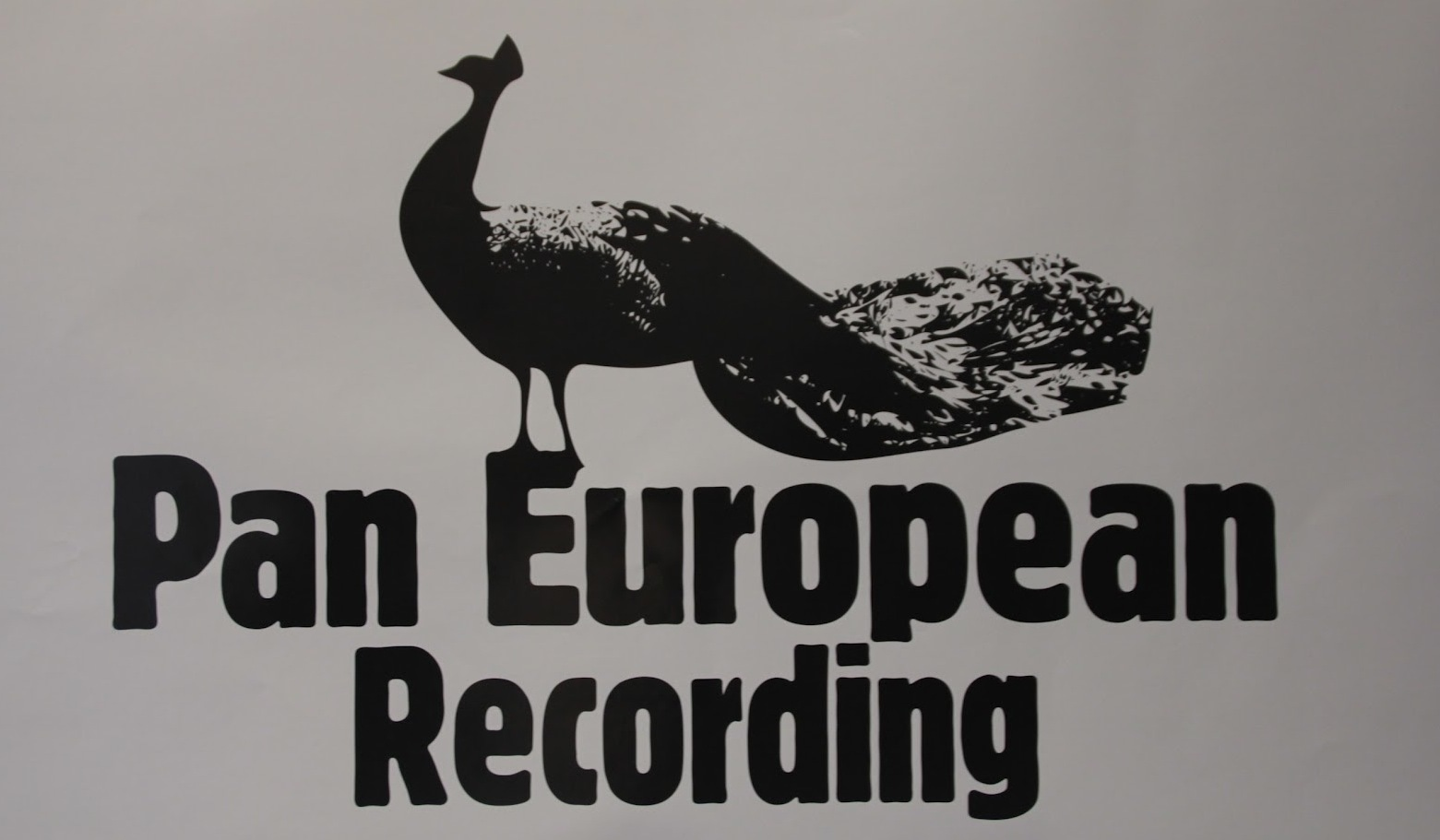 Entretien avec le label Pan European Recordings