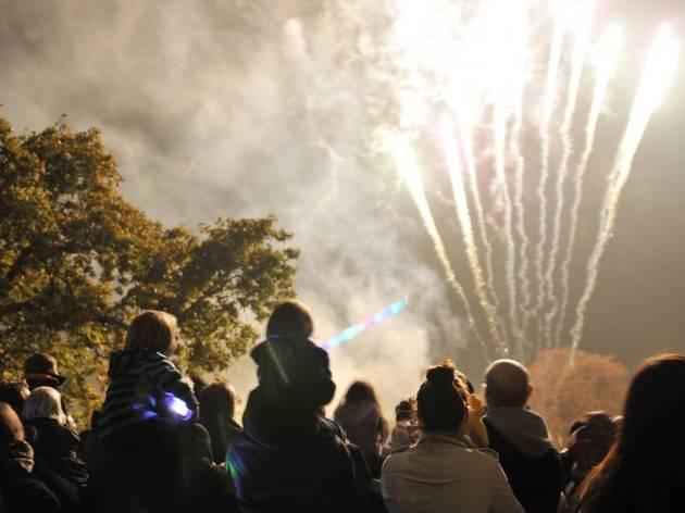 Richmond Family Fireworks