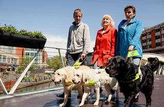 Guide Dogs Sensory Experience