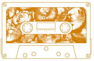 cassette tardor 2013